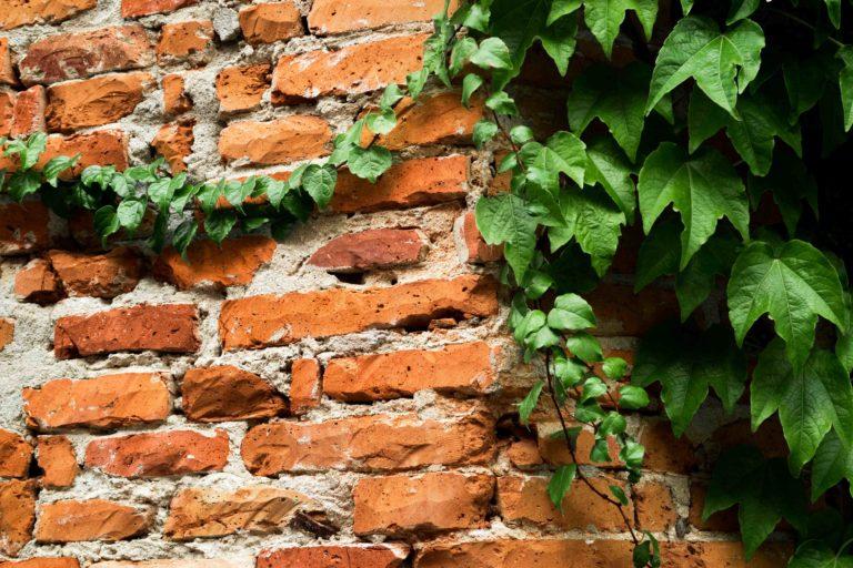 les briques de toulouse